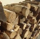 niseko firewood