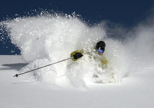 niseko ski